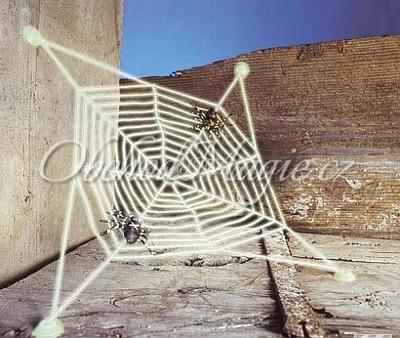 Čarodějnické dekorace-Pavučina se 2 pavouky - 27x27cm